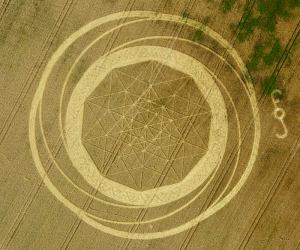 z101 Jubilee Plantation, nr Cherhill, Wiltshire 15082011